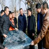 樊双全调研白沙河生态治理和道路建设规划工作